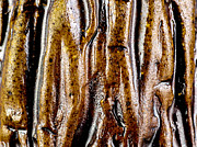 Rough Abstract Ceramic Surface Print by Kerstin Ivarsson