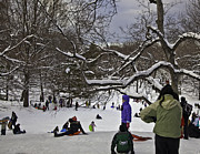 Snowstorm Framed Prints - Snowboarding  in Central Park  2011 Framed Print by Madeline Ellis