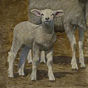 John  Reynolds - Spring Lamb