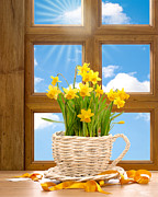 Daffodils Posters - Spring Window Poster by Christopher and Amanda Elwell