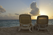 Outdoor Chair Posters - Sun lounger on tropical beach Poster by Sami Sarkis