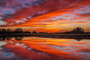 Awesome Prints - Sunset Reflections Print by Robert Bales