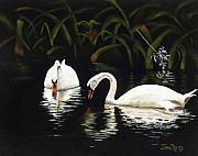 Swans... Paintings - Swans II by Jan Reid