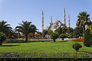 Ahmet Framed Prints - The Blue Mosque Istanbul Framed Print by Robert Preston