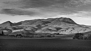 Bank; Clouds; Hills  Prints - The Butte Print by Robert Bales