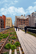 Walking Framed Prints - The High Line Urban Park New York Citiy Framed Print by Amy Cicconi