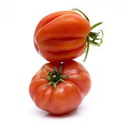 Tomatoes Print by Bernard Jaubert