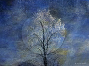 Moon Digital Art Framed Prints - Tree Of Ice Framed Print by J Larry Walker