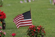 Robert D  Brozek - US Flag on MEMORIAL DAY