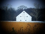 Michael L Kimble - White Barn