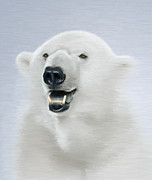 Kodiak Digital Art Prints - White Bear Print by Aleksey Tugolukov