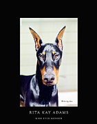 Doberman Art Posters - Wide Eyed Wonder Poster by Rita Kay Adams