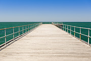 Jetty View Park Posters - Wooden Jetty Poster by Tim Hester