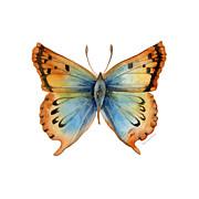 33 Opal Copper Butterfly Print by Amy Kirkpatrick