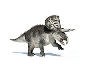 One Animal Digital Art - 3d Rendering Of A Zuniceratops Dinosaur by Leonello Calvetti