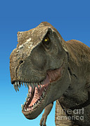 One Animal Digital Art - 3d Rendering Of Tyrannosaurus Rex by Leonello Calvetti