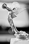 Collector Hood Ornament Posters - 1928 Isotta Fraschini Tipo 8AS Landaulet Hood Ornament Poster by Jill Reger