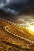A Country Road In Field At Sunset Print by Evgeny Kuklev