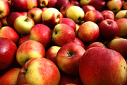 Fresh Food Metal Prints - Apples Metal Print by Olivier Le Queinec