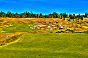 Pga Photo Framed Prints - #4 at Chambers Bay Golf Course - Location of the 2015 U.S. Open Championship Framed Print by David Patterson