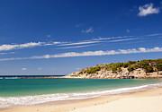 Tim Hester - Australian Beach