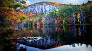 Reflection In Water Posters - Bald Rock Mountain Nc Poster by Sheila Kay McIntyre