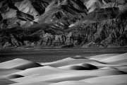 Sand Dunes Pyrography Metal Prints - Beautiful Sand Dune Formations in Death Valley California Metal Print by Katrina Brown