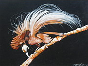 Sharon Wilkens - Bird of Paradise