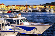 Moored Photos - Boats at St.Tropez by Elena Elisseeva