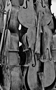 Violin Digital Art - 4 Cellos Black And White by Rob Hans