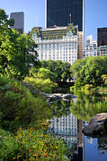 Central Park Skyline Prints - Central Park Print by Brian Jannsen