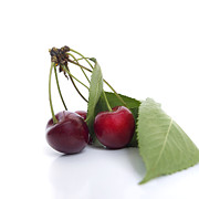 Food And Drink Metal Prints - Cherries Metal Print by Bernard Jaubert