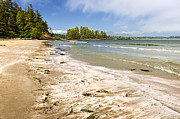 Deserted Island Prints - Coast of Pacific ocean on Vancouver Island Print by Elena Elisseeva