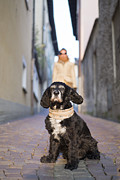 Dog Walking Photo Prints - Cool dog Print by Mats Silvan