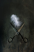 Scissors Posters - Feather Poster by Joana Kruse