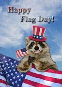 Wildlife Celebration Drawings - Flag Day Raccoon by Jeanette K