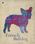 French Bulldog Posters Framed Prints - French Bulldog  Framed Print by Brian Buckley