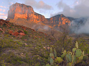 Guadalupe Posters - Guadalupe Mountains Sunrise Poster by Stephen  Vecchiotti