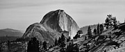 Yosemite National Park Framed Prints - Half Dome Framed Print by Cat Connor