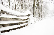 Board Fence Prints - Hurricane Sandy Snow Print by Thomas R Fletcher