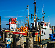 Fishing Boat Prints - Montauk Fishing Boats Print by Mac Titmus
