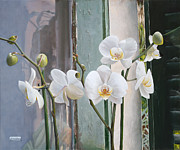 Interior Still Life Paintings - 4 Orchidee by Danka Weitzen