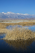 Dry Lake Photos - Owens Lake by Jim West