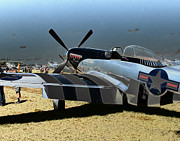 North American P51 Mustang Photo Posters - P51 Mustang  Poster by Tim Rutz