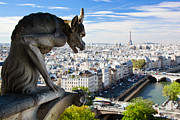 French Photos - Paris panorama France by Michal Bednarek