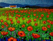 Metal Art Print Posters - Poppy Field Poster by John  Nolan
