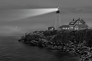 Flying Seagulls Framed Prints - Portland Head Lighthouse Framed Print by Mike McGlothlen