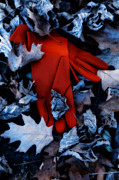 Glove Photo Metal Prints - Red Gloves Metal Print by Joana Kruse
