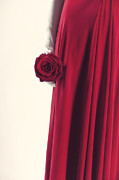 Woman Photos - Red Rose by Joana Kruse