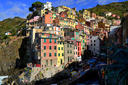 Wine Tasting Prints - Riomaggiore Print by Barbara Walsh